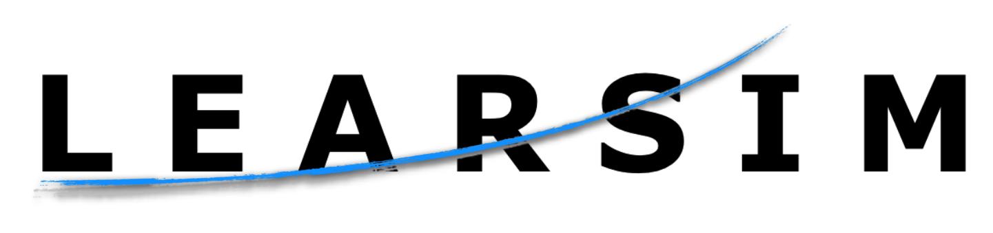 Learsim – A Bizjet Flight Simulator Inspired By Learjet 45